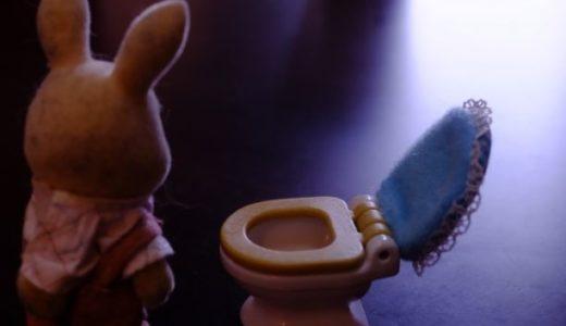 オムツはずれが遅いと何か問題はある?トイレトレーニングで大事なこと。