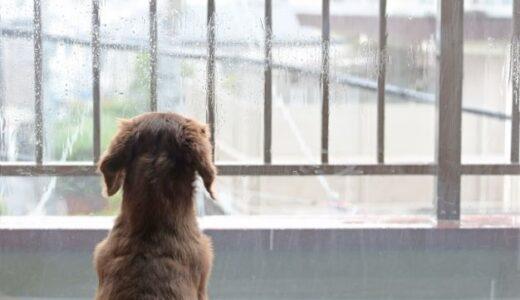雨の日はやる気でない…10つの提案がそんなあなたを変えるかも!?